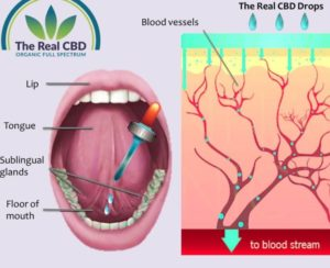 cbd sublingual intake